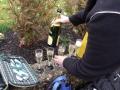 martinslauf-2010-023