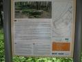k1024_wanderung-2011-038